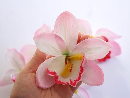 Orchid Big Rosa 5x