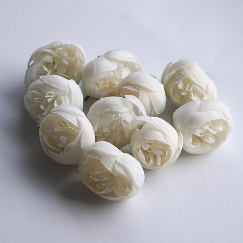 White Peonies 10x