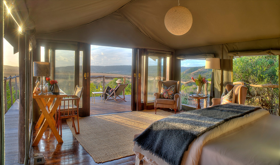 Hillsnek Safari Lodge, Eastern Cape