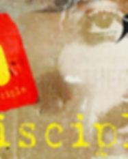 Disciple-Poster-e-e1494255127627-1.jpg