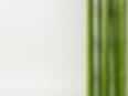 たなか整形漢方クリニック,診療案内,貝塚,整形外科,漢方,皮膚科,二色浜,田中,田中整形,田中裕之