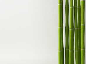 Bamboo is 100% recyclable; this makes it a very efficient and economical material and great for the environment.