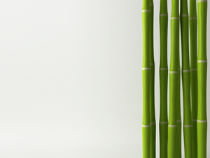 Bamboo for luck party gift - Electric Dreamz