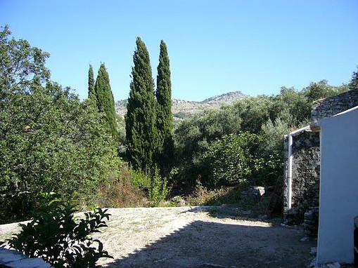 Wild gardens next to the property
