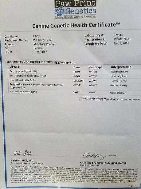 Libby's Geneticc Health Certificate.jpg