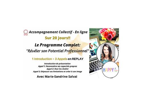 Programme de 20 jours: Révéler son Potentiel Professionnel