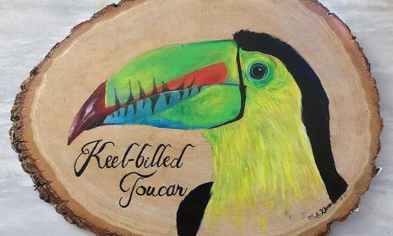 Keel-billed Toucan, acrylic on basswood.