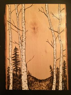 Birch Trees Panel