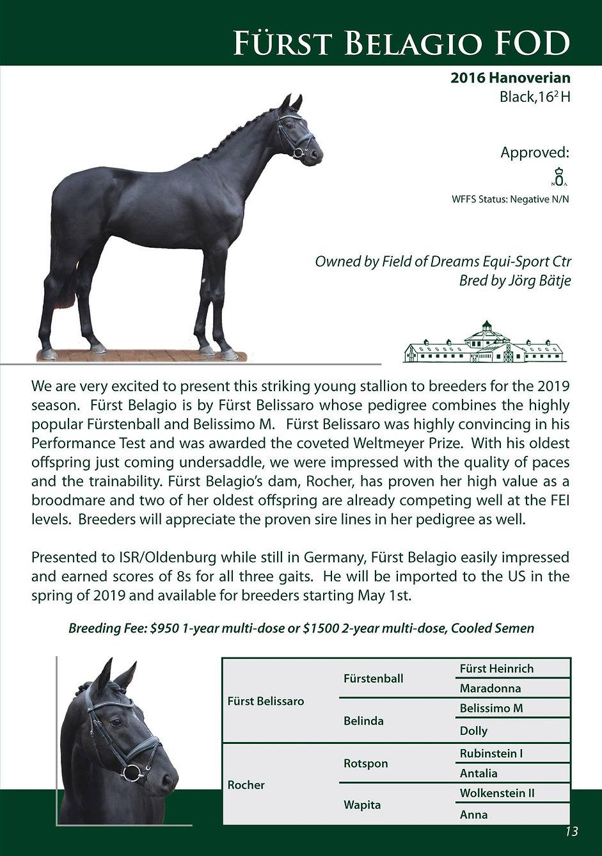 Furst - Stallion Page.jpg