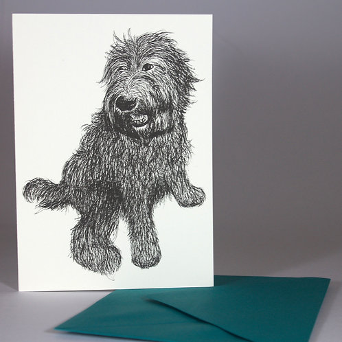 Labradoodle, blank card