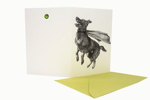 Super Dog, blank card