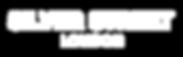 SILVER STREET-logo-white-5.png