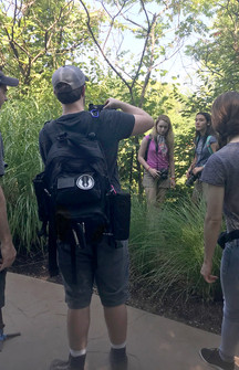 Filming at the Zoo