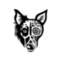 cc_head_social_black.png