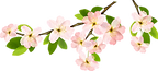 92-920295_spring-transparent-background-