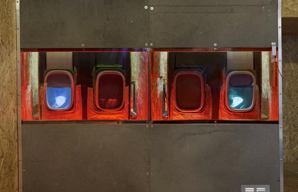 Cabin Pressure - Jenkin van Zyl at Amanda Wilkinson Gallery