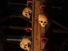 Skull Column