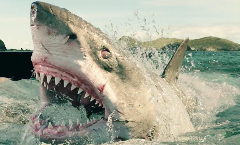 Shark Week 31 Teaser