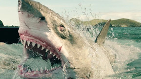 [Trailer] This Year's 'Shark Week' Begins On July 28th
