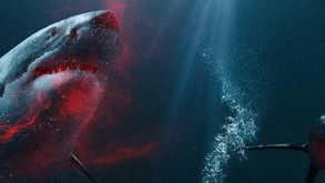 48 Meters Down Set For June 2019 Theatrical Release