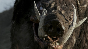 [Review] 'Boar' Gores A Place For Itself In The Creature Feature Genre
