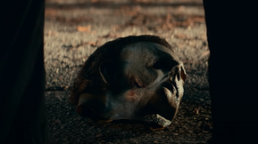 """New 'Halloween Kills' Footage Debuted Out of """"BlumFest"""" [Video]"""