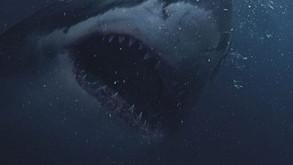 Killer Shark Flick 'Great White' Gets A Terrifying Poster