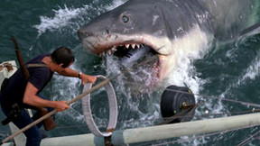 Amblinesque 'Jaws' Infographic Print Details The Infamous Great White