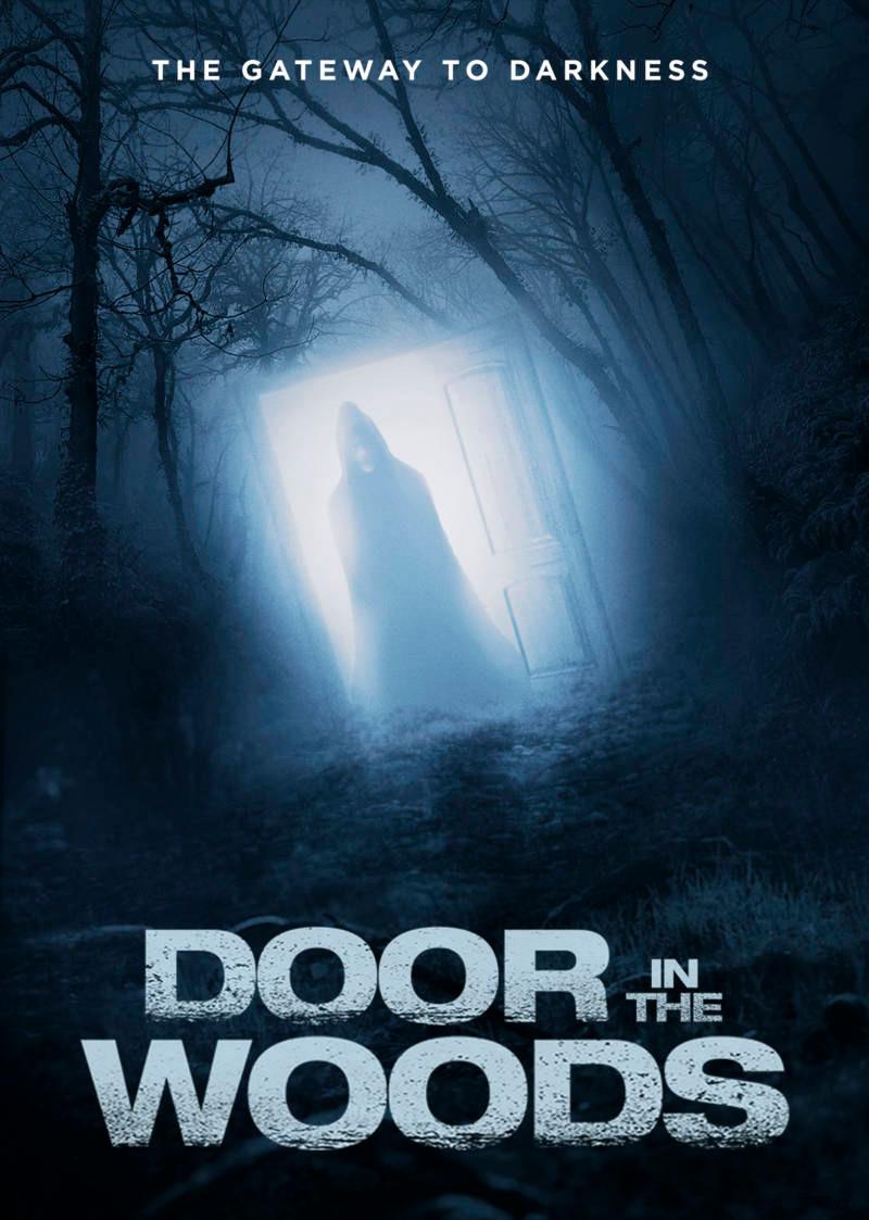 Door in the Woods Poster