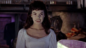 Scream Factory Bringing 'The Brides of Dracula' to Collector's Edition Blu-ray With New 2K Scan