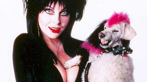 Elvira's Autobiography Will Be Released During The 2020 Halloween Season