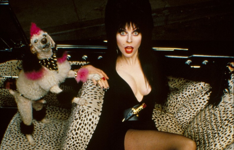 Cassandra Peterson Teases Sequel To Elvira: Mistress Of The Dark