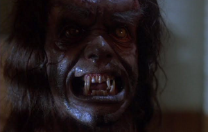 In Search of Darkness Clip Howling American Werewolf