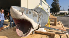 [Images] Greg Nicotero And His Team Are Restoring The Original Shark From 'Jaws'