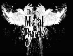 Metal Byrds
