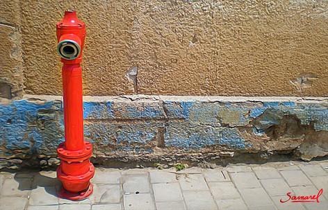 Lonley Hydrant
