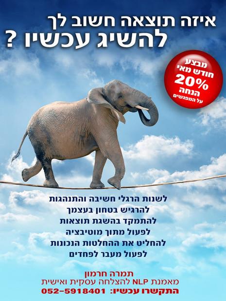 AD-Elephant-min.jpg