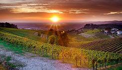 Colli-euganei-paesaggio.jpg