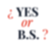 LOGO yes or bs copy.png
