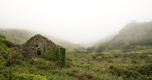 A ruined house covered in moss and grass in a misty landscape