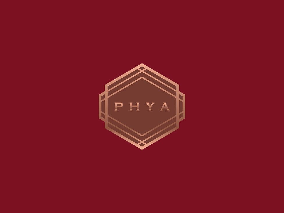 phya-01.jpg