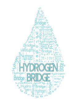 Hydrogen Bridge