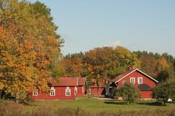Typische zweedse huizen
