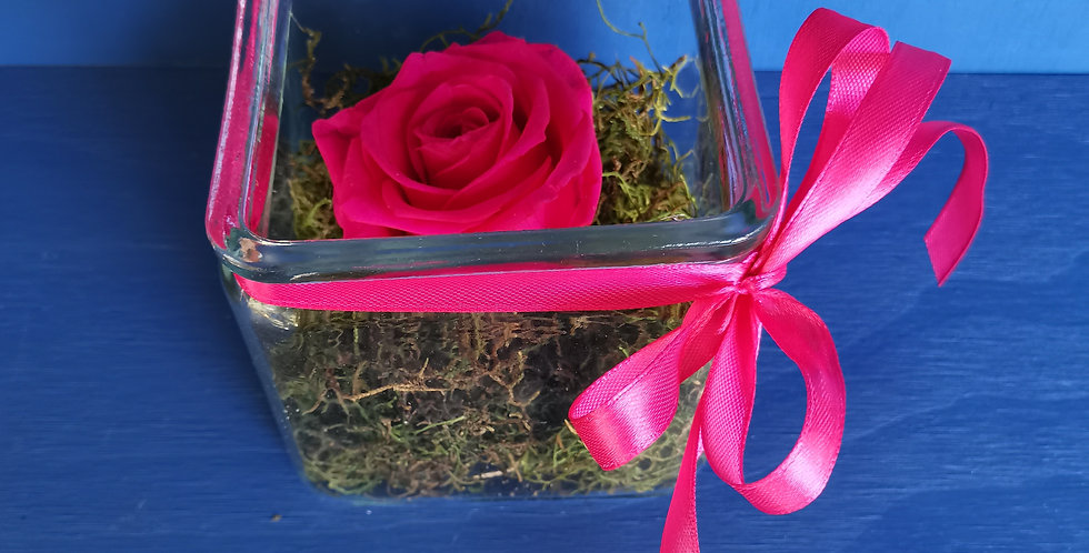 Preserved Rose Collection