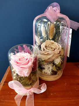 Dried and Preserved Domes with Roses
