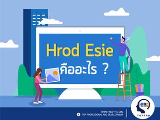 HRO Esie คืออะไร? แล้วเราคือใคร?