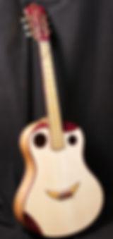 Clin d'oeil Wilgenbus guitars Luthier Réunion