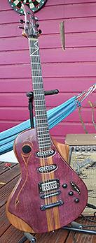 Forest  Guitares Wilgenbus Nicolas Luthier Inventeur la Reunion