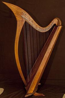 Harpe Celtique Wilgenbus Nicolas Luthier Inventeur la Reunion