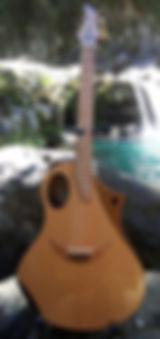 Saturne Guitares Folk  Wilgenbus Nicolas Luthier Inventeur la Reunion